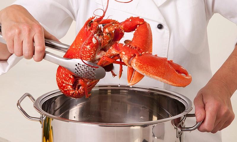 mariscos-cocidos-consejos