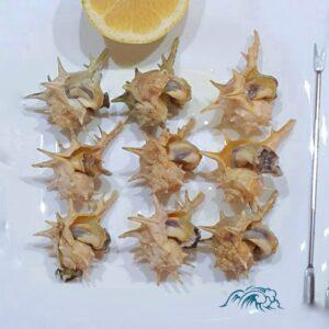 moluscos-online-mariscos-frescos-a-domicilio