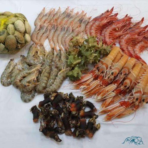 Mariscada Gourmet del Mar A Domicilio