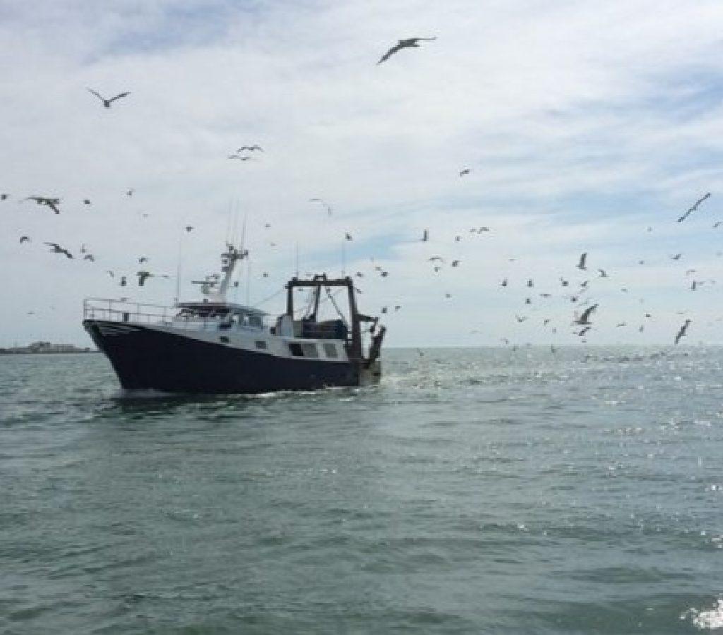 puerto-pesquero-de-ayamonte-huelva